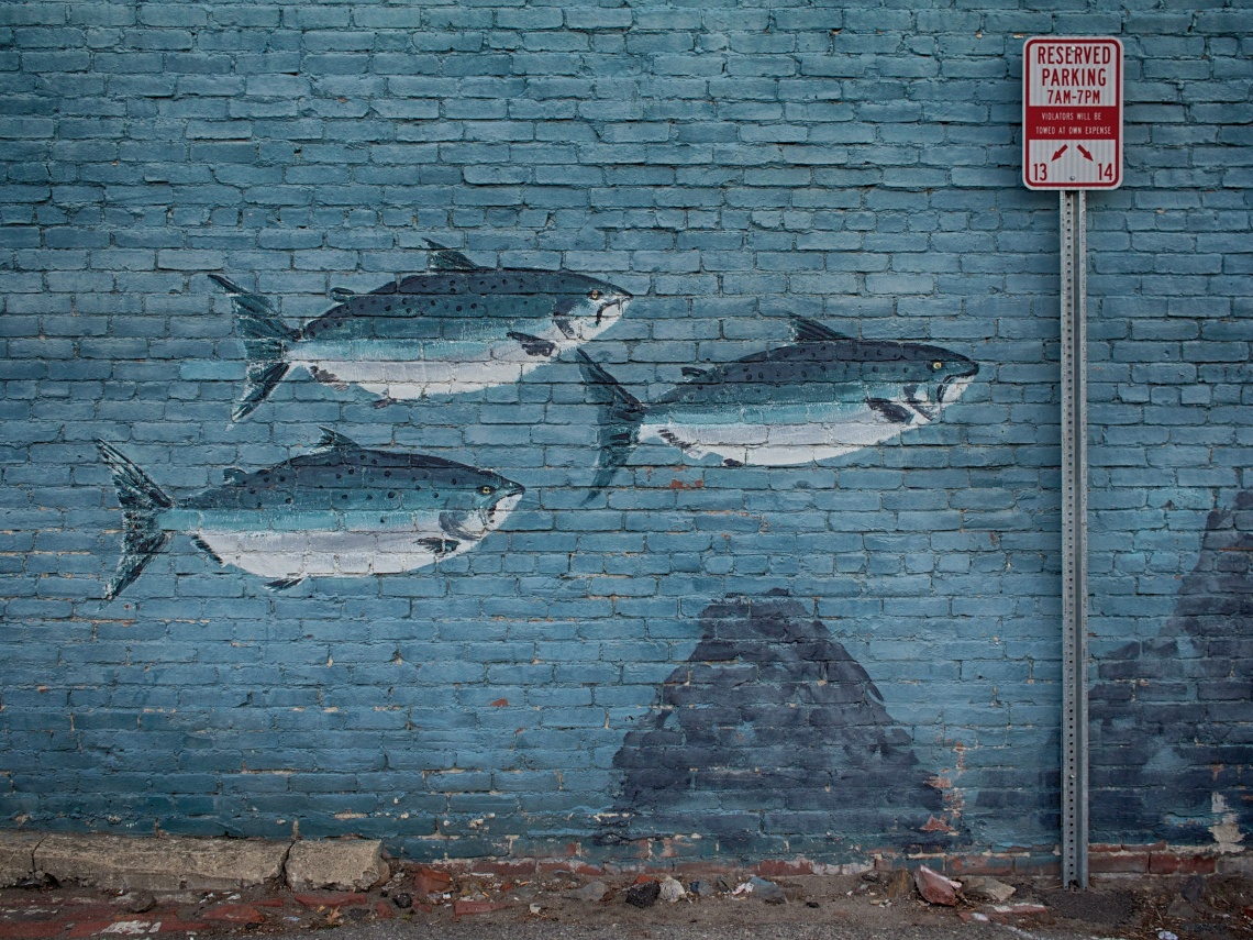 Wall art in an old parking lot in Portsmouth, NH
