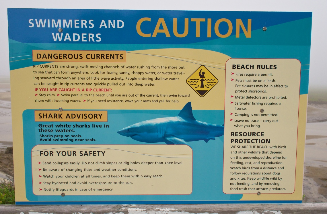 Walking out onto a breakwater area, I came across this onimous sign warning of sharks near Provincetown in Cape Cod, Mass.