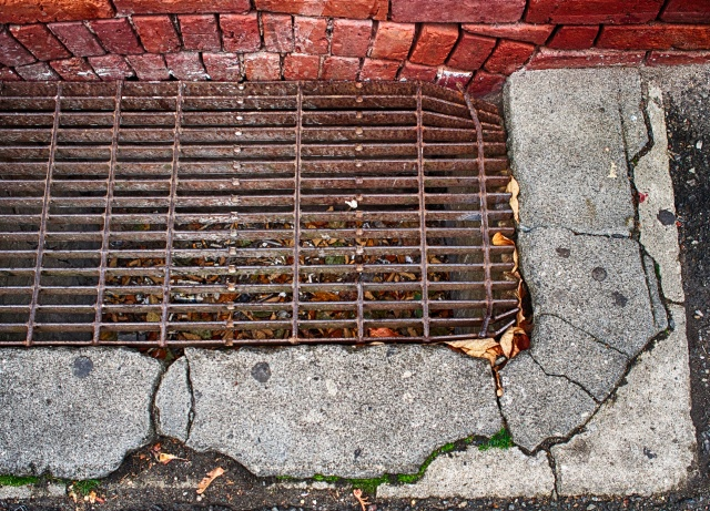 Walking along I came upon this grate in the sidewalk. I thought all the different textures and colors made an interesting blend.