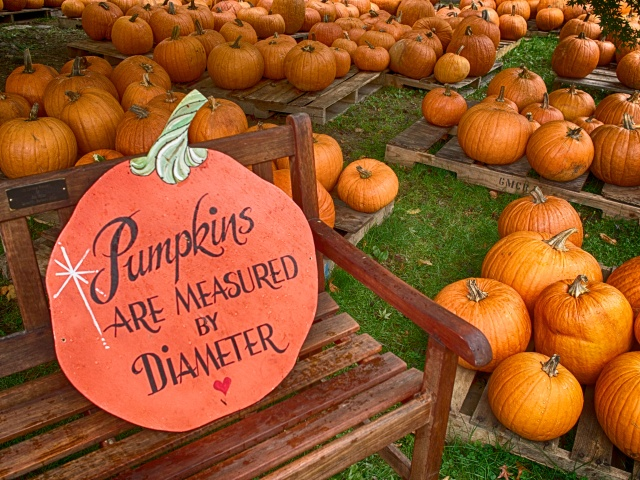 Pumpkins by the pound? I guess not?