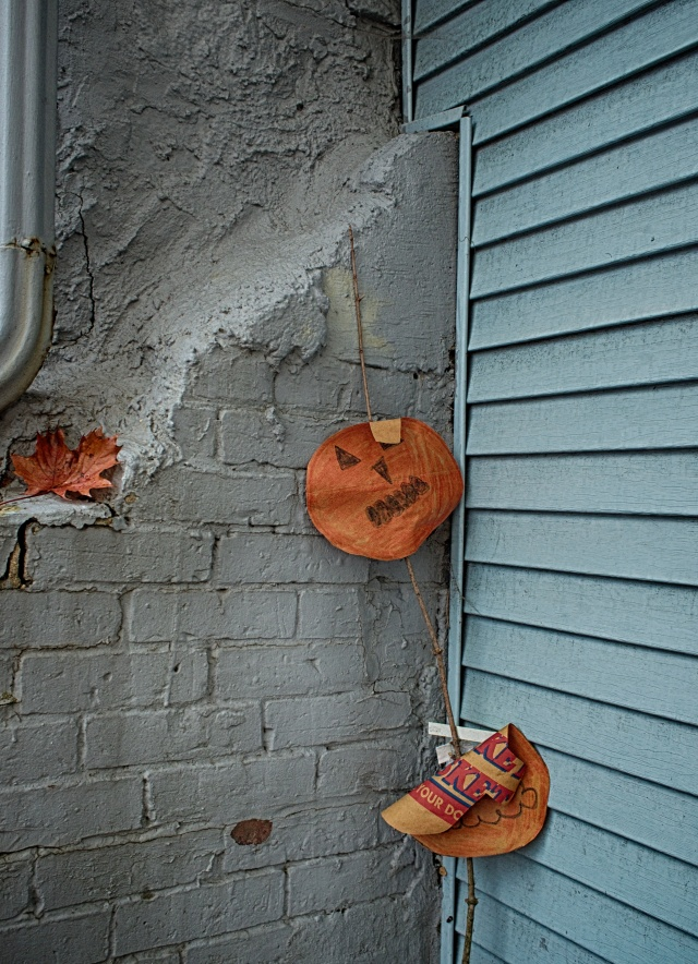Creepy floating pumpkin heads staring out at passersby's.
