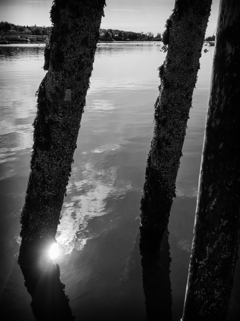I happened to catch a sunbeam dancing among the pilings on the pier at Boothbay Harbor in Maine.