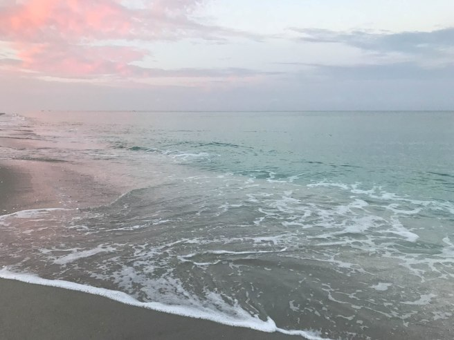 I Recently Spent A Week In Florida On Manasota Key If I Could Describe The Key In One Word I Would Say It Was Magical For The Next Seven Days